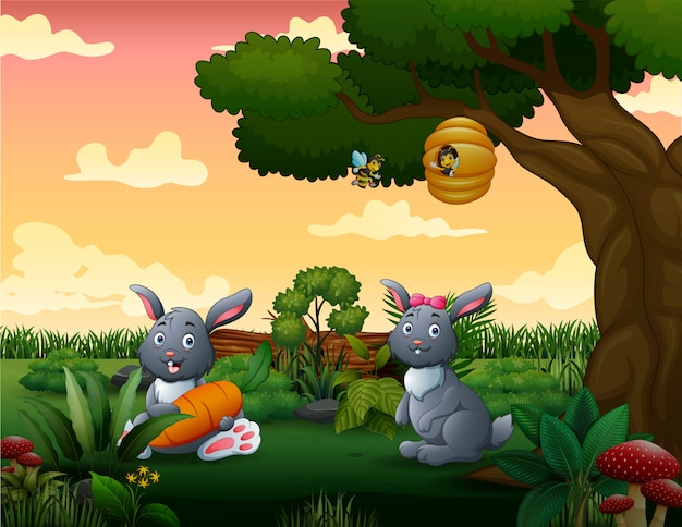 Dessin animé deux lapins dans le parc
