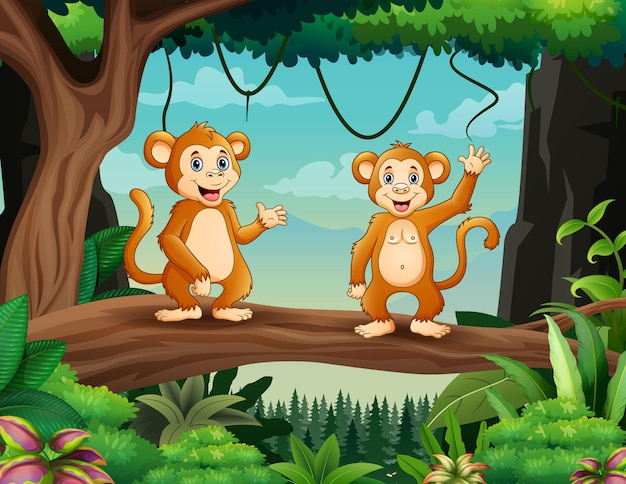 Dessin animé deux singes mignons debout sur bois