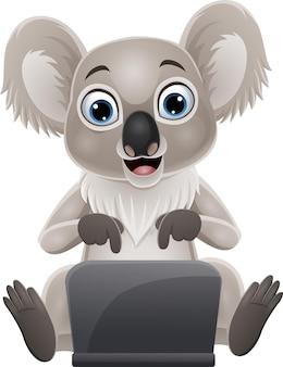 Dessin animé drôle bébé koala avec ordinateur portable