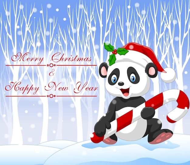 Dessin animé drôle bébé panda tenant des bonbons de noël