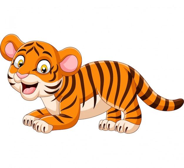 Dessin animé drôle bébé tigre