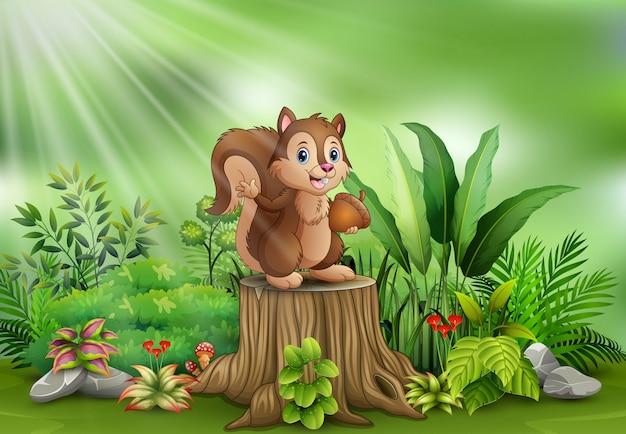 Dessin animé drôle écureuil tenant une pomme de pin et debout sur une souche