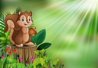 Dessin animé drôle écureuil tenant une pomme de pin et debout sur une souche d'arbre avec des plantes vertes