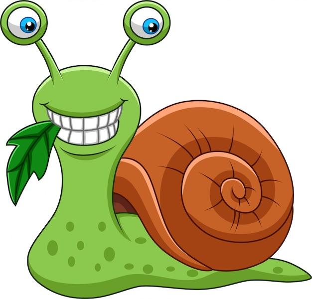 Dessin animé drôle d'escargot mangeant une feuille