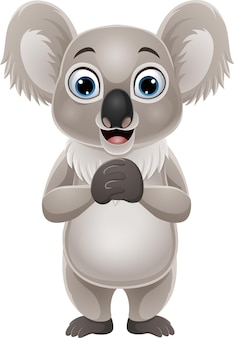 Dessin animé drôle koala sur blanc