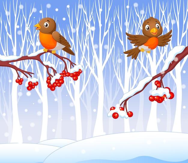 Dessin animé drôle oiseau robin sur le cerisier