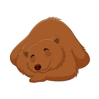 Dessin animé drôle ours brun dormant