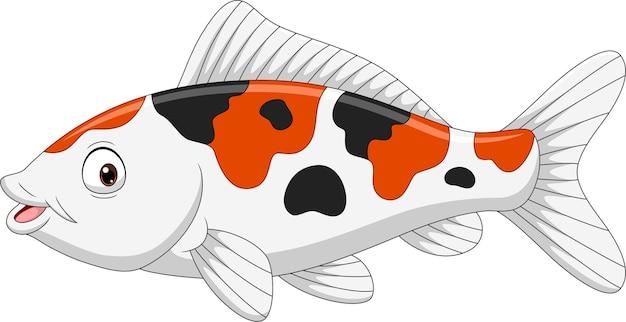 Dessin animé drôle de poisson koi sur blanc