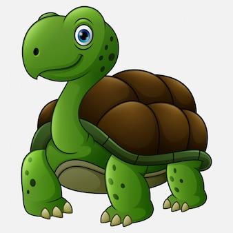 Dessin animé drôle de tortue