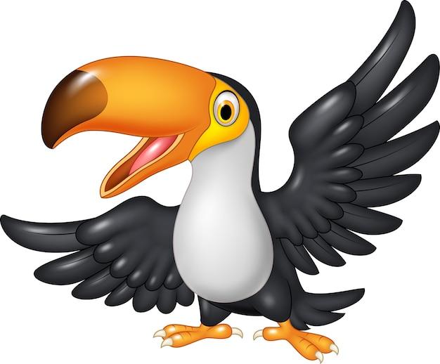 Dessin animé drôle toucan isolé sur fond blanc