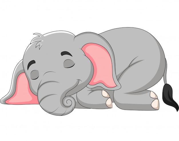 Dessin animé, éléphant, dormir