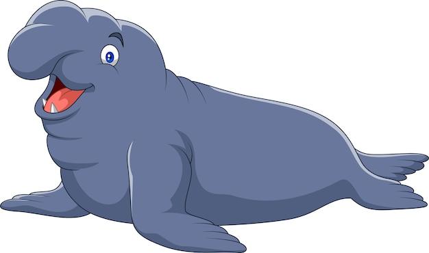 Dessin animé éléphant seal isolé sur fond blanc
