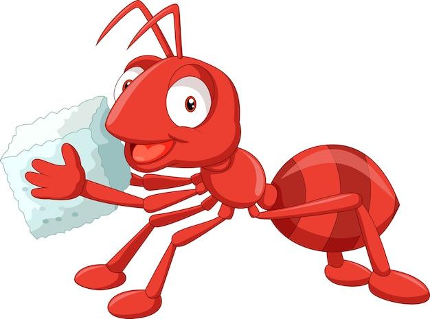 Dessin animé fourmi rouge portant du sucre