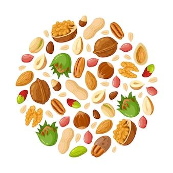 Dessin animé de graines et de noix. amande, arachide, noix de cajou, graines de tournesol, noisette et pistache