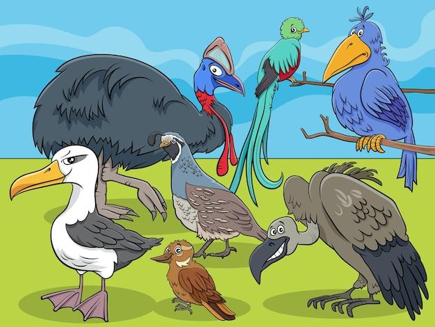 Dessin animé de groupe de personnages animaux oiseaux