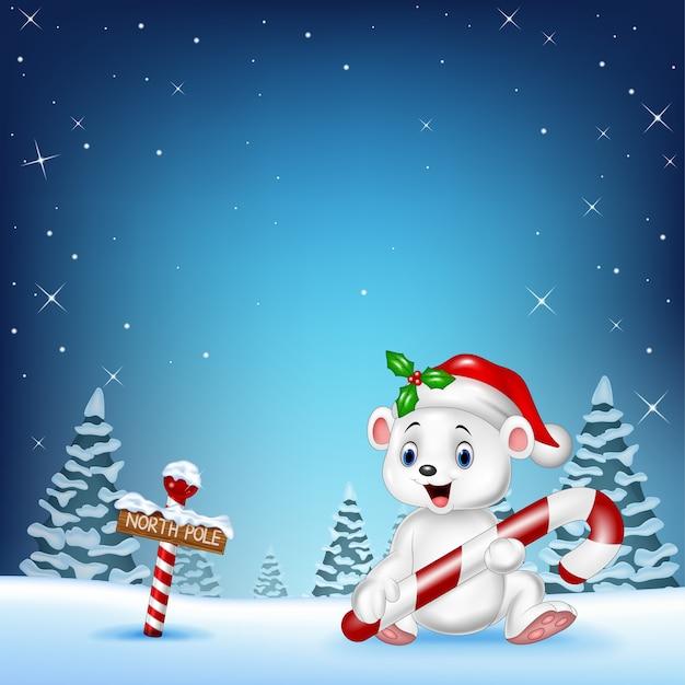 Dessin animé heureux ours polaire tenant des bonbons