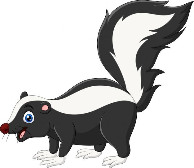 Dessin animé heureux skunk sur blanc