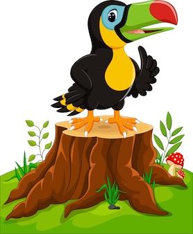 Dessin animé joyeux toucan sur souche d'arbre