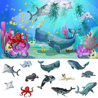 Dessin animé, mer, et, océan, faune, concept