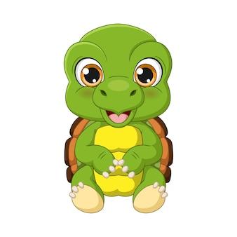Dessin animé mignon bébé tortue assis