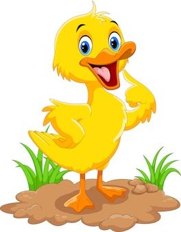 Dessin animé mignon de canard