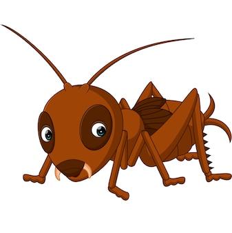 Dessin animé mignon de cricket