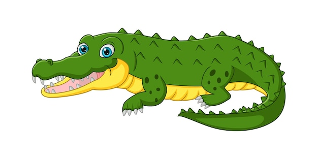Dessin animé mignon crocodile isolé sur blanc