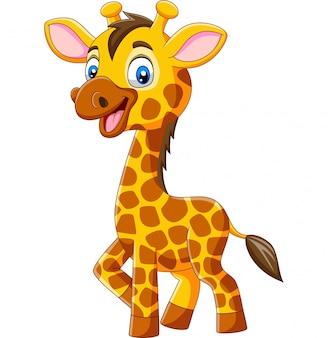 Dessin animé mignon girafe isolé sur fond blanc