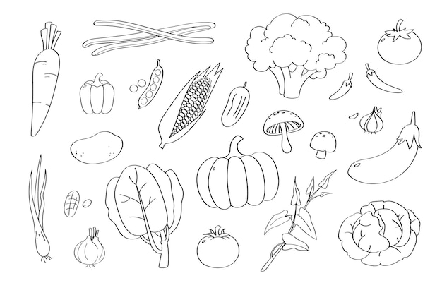Dessin animé mignon de légumes