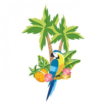 Dessin animé mignon perroquet tropical