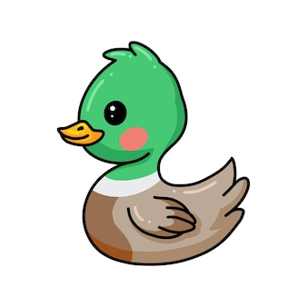 Dessin animé mignon petit canard vert