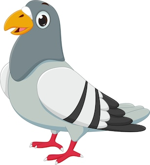 Dessin animé mignon de pigeon
