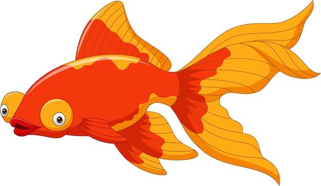 Dessin animé mignon poisson rouge sur un blanc