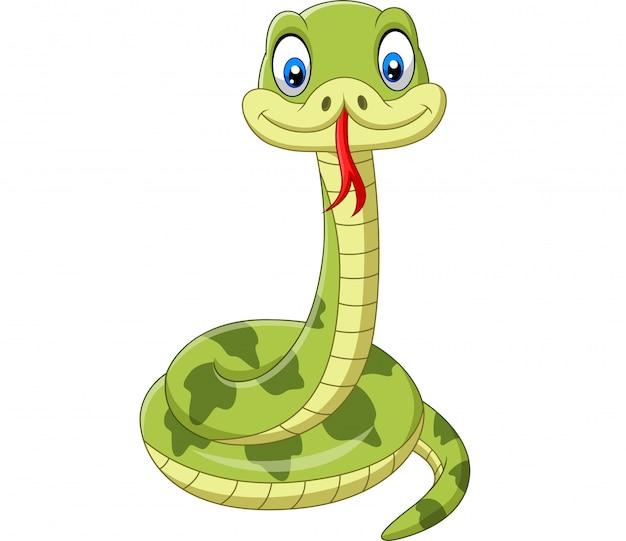 Dessin animé mignon serpent vert isolé