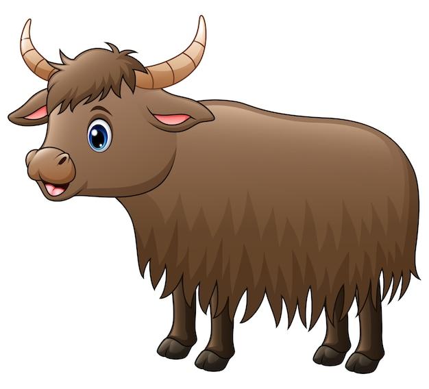 Dessin animé mignon yak