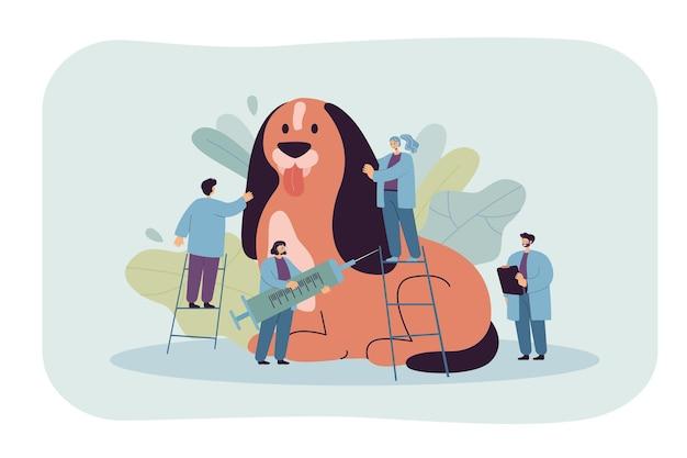 Dessin animé de minuscules vétérinaires examinant ou traitant un chien géant. illustration plate.