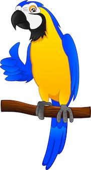 Dessin animé oiseau perroquet pouces vers le haut