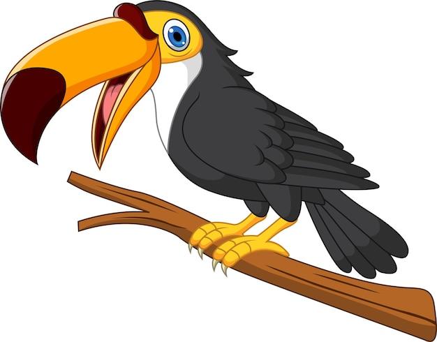 Dessin animé oiseau toucan sur une branche d'arbre