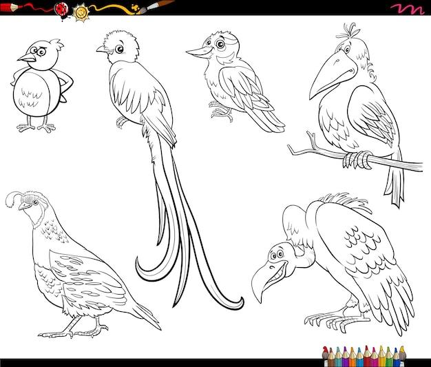 Dessin animé, oiseaux, animaux, caractères, ensemble, livre coloration, page