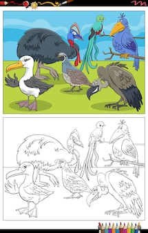 Dessin animé, oiseaux, animaux, caractères, livre coloration, page