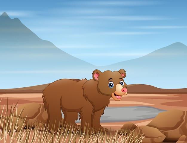Dessin animé ours dans un champ sec