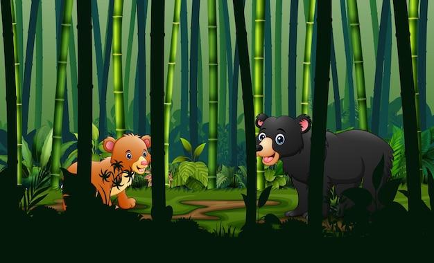 Dessin animé un ours et un petit dans la forêt de bambous
