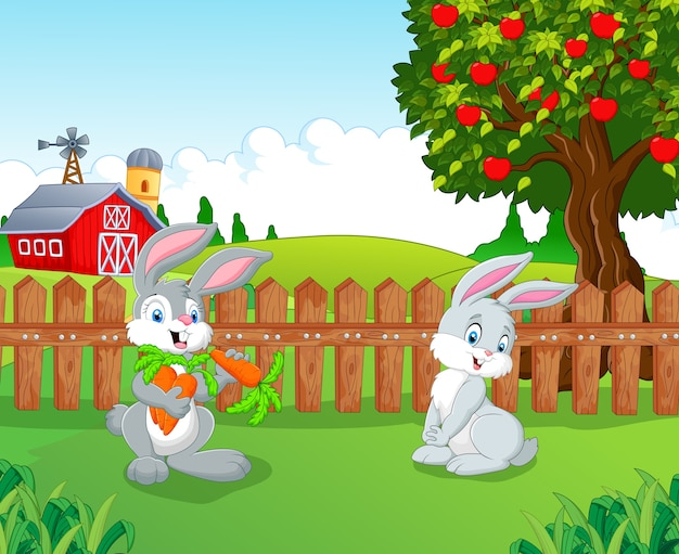 Dessin animé petit lapin à la ferme