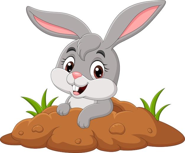 Dessin animé petit lapin hors du trou