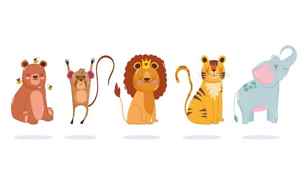 Dessin animé petit lion, tigre, ours, singe et éléphant