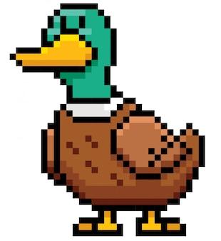 Dessin animé pixel de canard