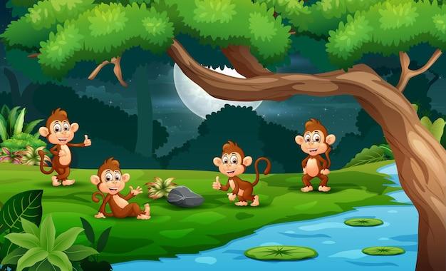 Dessin animé quatre singes mignons profitant de la nature la nuit