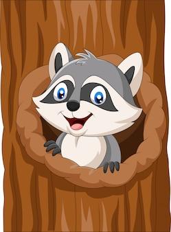 Dessin animé de raton laveur assis au creux d'un arbre