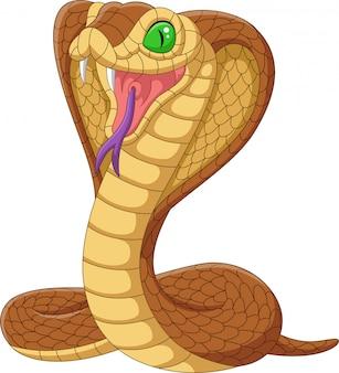 Dessin animé roi serpent cobra isolé