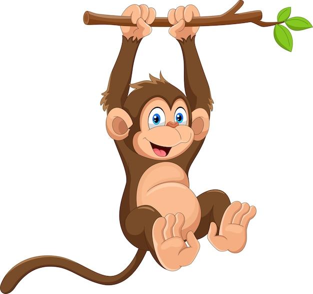 Dessin animé singe mignon accroché sur une branche d'arbre